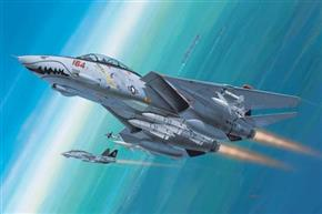 F-14D Super Tomcat Set